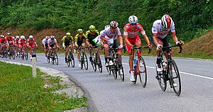 2019 Tour of Slovenia, Stage 3, UAE Team Emirates pulling the Peloton.jpg