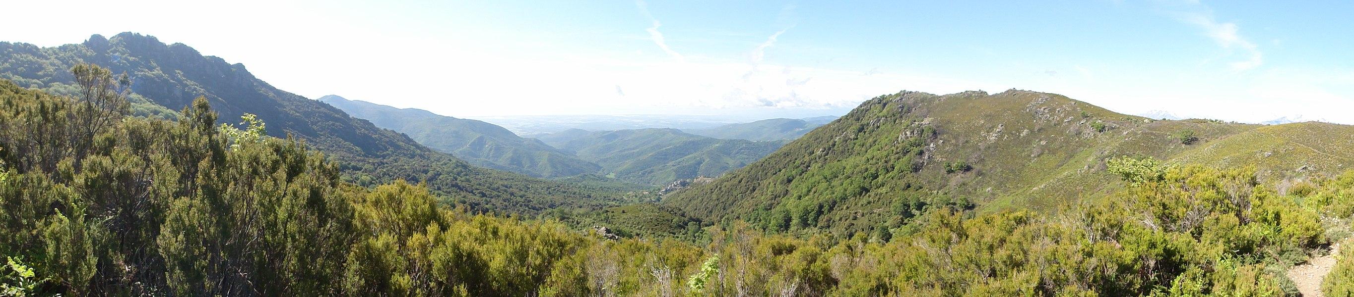 20234 Perelli, France