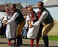 22.7.17 Jindrichuv Hradec and Folk Dance 203 (36062463746).jpg