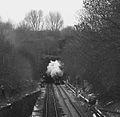 5043 , Claycross Tunnel (1).jpg
