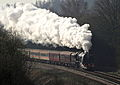 6233 Duchess of Sutherland Evershill Lane Morton.jpg