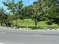 9 - panoramio (3).jpg