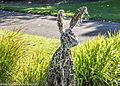 A Hares Breath by Ciara Foster- Sculpture In Context 2012 at the National Botanic Gardens (7958728446).jpg