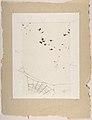 A Swarm of Flies above a Spider's Web MET DP807225.jpg
