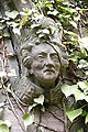 A face in the ivy - geograph.org.uk - 771028.jpg