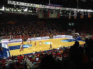 Galatasaray S.K. (men's basketball) - A Galatasaray home match in 2013 at the Abdi Ipekci Arena