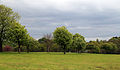 Across park towards south-west from the Woodyard at Wollaton Park, Nottingham, England.jpg