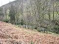 Afon Caws - geograph.org.uk - 750800.jpg