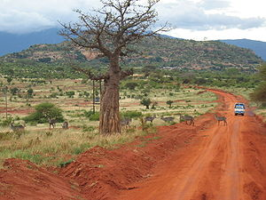 Straße im Tsavo-East-Nationalpark