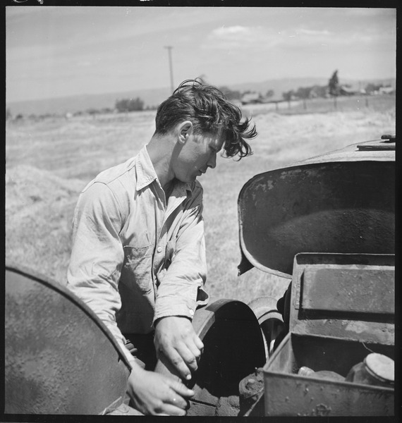 File:Alameda County, California. Miscellaneous. Son of a small farmer, this Portuguese (man) works part of the time on his... - NARA - 532152.tiff