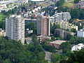Albis - Leimbach IMG 3307.JPG