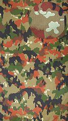 http://upload.wikimedia.org/wikipedia/commons/thumb/e/e5/Alpenflage.JPG/134px-Alpenflage.JPG