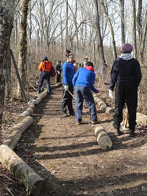 """Alternative break - Students on cleanup duty at Shenandoah River Raymond R. """"Andy"""" Guest Jr. State Park in Virginia during an alternative spring break trip."""