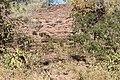Alto Araguaia - State of Mato Grosso, Brazil - panoramio (345).jpg
