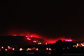 Alvor Wild Fire June 2014 (14471436444).jpg