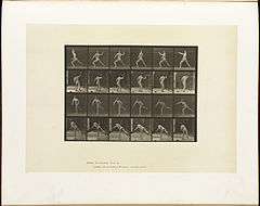 Animal locomotion. Plate 360 (Boston Public Library).jpg