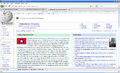 Animum's view of the main page.png