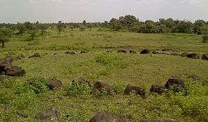 Stone circles of Junapani - Another view of the Stone Circle