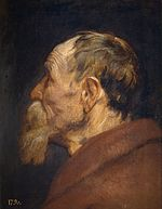 Anthony van Dyck - Head of an Old Man.jpg