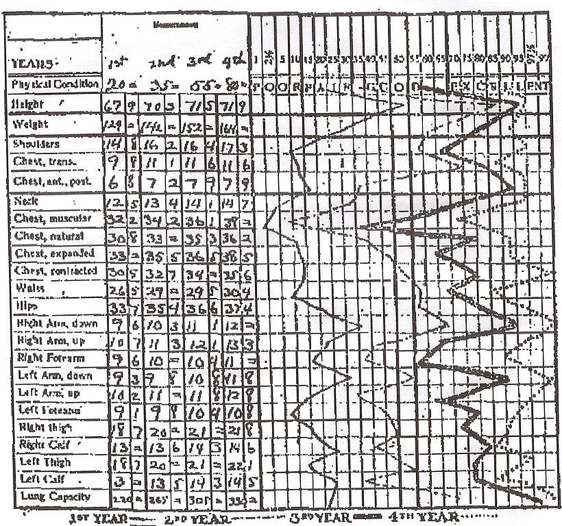 Weight Training Chart: Anthropometric Chart (Fitzpatrick).jpg - Wikimedia Commons,Chart