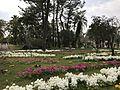 Aoshima Subtropical Botanical Garden 4.jpg