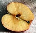 Apfelhälfte Pinova süß fruchtig 2008-3-1.jpg