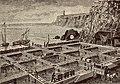 Application du 'Decauville' au service d'un parc a huitres - Etablissements Decauville Aine a Petit-Bourg (Seine-&-Oise) - Materiel pour parc a huitres.jpg