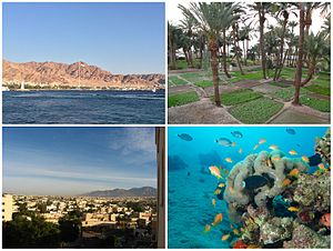 Aqaba city, from right to left and from above to below: Shatt Al-Ghandour Gardens, view of Aqaba, diving in Red Sea and Aqaba's skyline