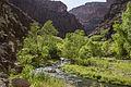 Aravaipa Canyon Wilderness (15224912370).jpg