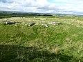 Arbor Low Stone Circle. - panoramio.jpg