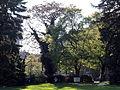 Arboretum Zürich 2014-04-23 18-25-12 (P7700).JPG