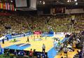 Arena Zlatorog.png