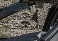 Army Rangers assault and raid enemy compound 141115-A-QU939-034.jpg