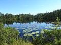 Astebotjarnen Vastergotland Sweden from SW again Aug1 2020.jpg