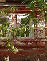 Astrakhan house 11 (4140596801).jpg
