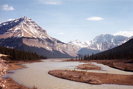 Athabasca rivier in Jasper National Park