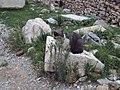 Athens 078.jpg