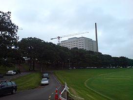 Auckland Hospital From The Domain.jpg