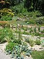 Augsburg Bot Garten Am Alpinum.jpg