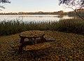 Autumn - panoramio (35).jpg