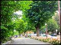Bérgamo (Italia) (10142005595).jpg