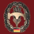 BRM Barettabzeichen Pi pix.png