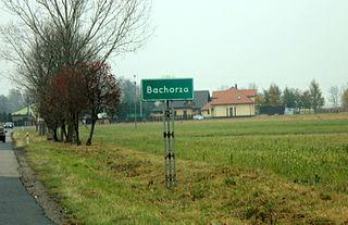 Bachorza, Sokołów County Village in Masovian, Poland