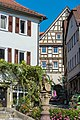 Bad Wimpfen - panoramio (30).jpg