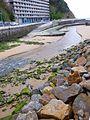 Bakio - río Zarraga 4.jpg