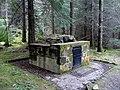Balconie Well in Evanton Woods - geograph.org.uk - 1702075.jpg