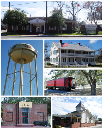 Baldwin, Florida - From top, left to right: Baldwin City Hall, Water tower, William Coleman House, Larry M. Carroll Memorial Park, Old Jail, First Baptist Church