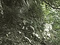 Banat,Nera Canyon - panoramio (8).jpg