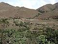 Bangitapal Trekking Shed.jpg