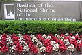 Basilica of the National Shrine of the Immaculate Conception sign.JPG
